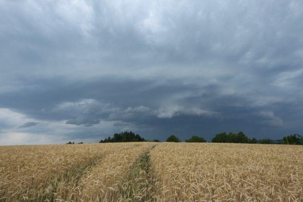 wolken weizenfeld